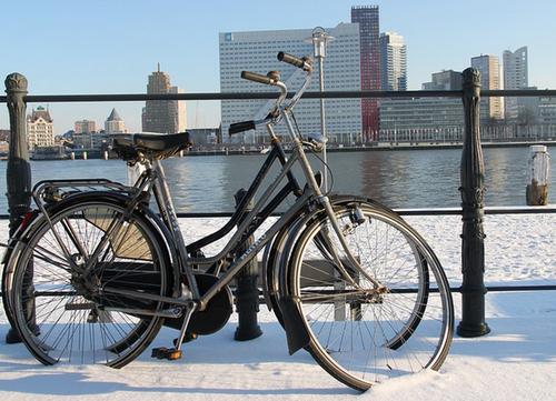 川端に止められた自転車の画像